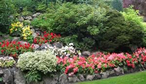 gardening back pain